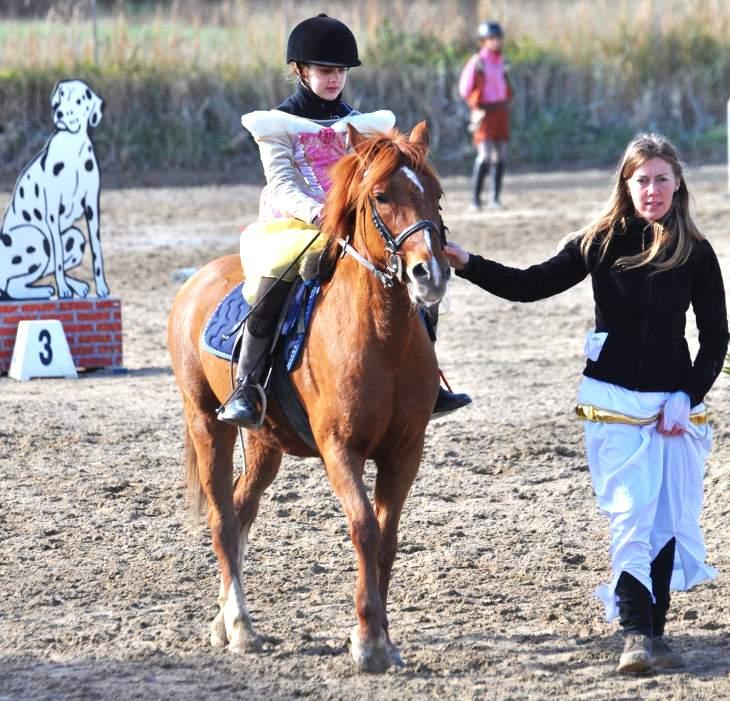 Corso di equitazione a Roma per bambini su pony