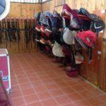 Kappa Equestre selleria deposito selle equitazione