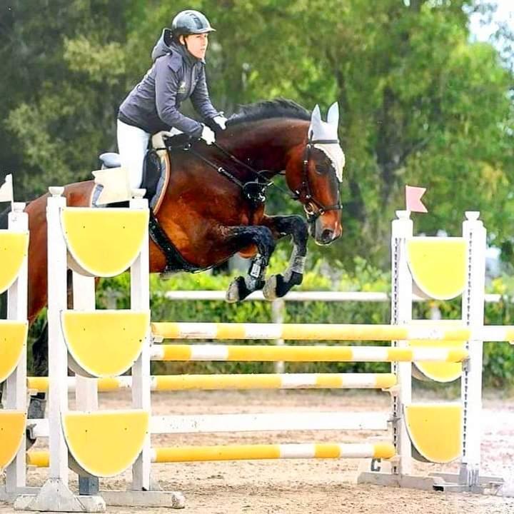 Concorso di equitazione salto ad ostacoli 2019 al maneggio Kappa Equestre di Roma
