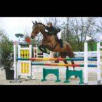 Scuola equitazione Kappa Equestre gara ad ostacoli