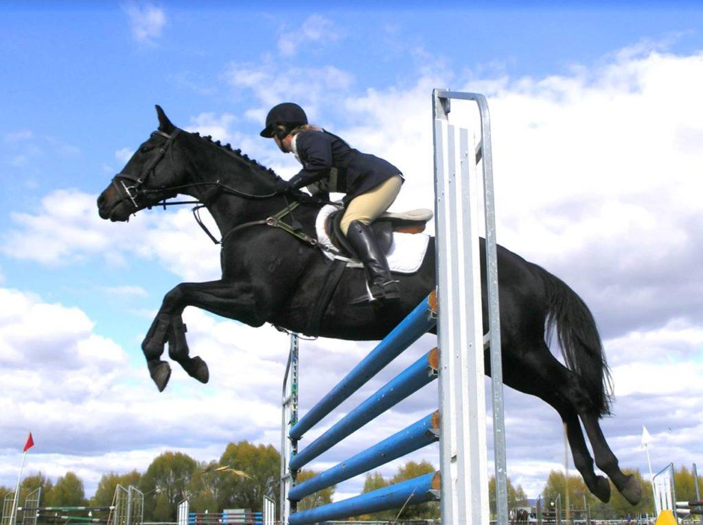 Calendario gare 2020 Equestre Kappa
